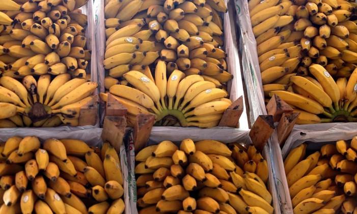 Preço de frutas caiu 7,61% Foto: Roberto Moreyra / Agência O Globo