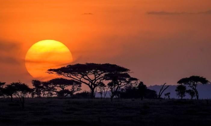 Deserto de Serengeti Foto: Creative Commons