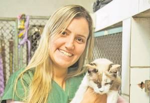 Atenção. A veterinária Raquel Lopes com gatos na sede da Suipa Foto: Analice Paron / Agência O Globo
