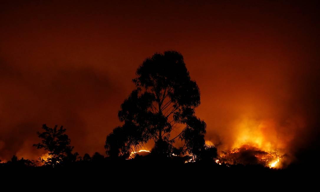 De acordo com as autoridades, o fogo foi provocado pela queda de um raio em numa árvore, e se alastrou pelas florestas de eucalipto RAFAEL MARCHANTE / REUTERS