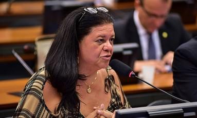 A deputada Laura Carneiro (PMDB-RJ) Foto: Zeca Ribeiro / Agência Câmara