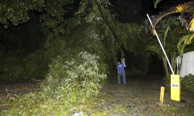 Uma árvore que caíu na quarta-feira na Gávea ainda não foi retirada Foto: Pedro Teixeira / Agência O Globo