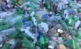Pelo menos 50 sacos de lixo foram recolhidos