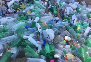 Pelo menos 50 sacos de lixo foram recolhidos Foto: Divulgação/Salvando São Conrado