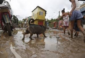 Alagamento após chuvas em comunidade no Sul de Pernambuco: tema só chama a atenção quando atrapalha a vida Foto: Parceiro / Diego Nigro/JC Imagem/30-05-2017
