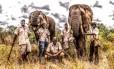O elefante Mbanjie (direita) foi sacrificado depois da morte do domador e o domador Enock (no centro)