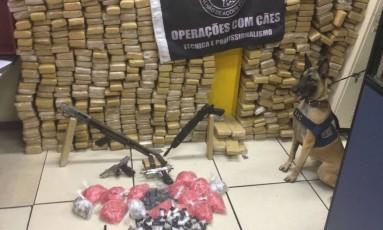 Golpe no tráfico. Um policial militar e um cão farejador diante da pilha de droga apreendida em favela de Copacabana Foto: Divulgação - Polícia Militar