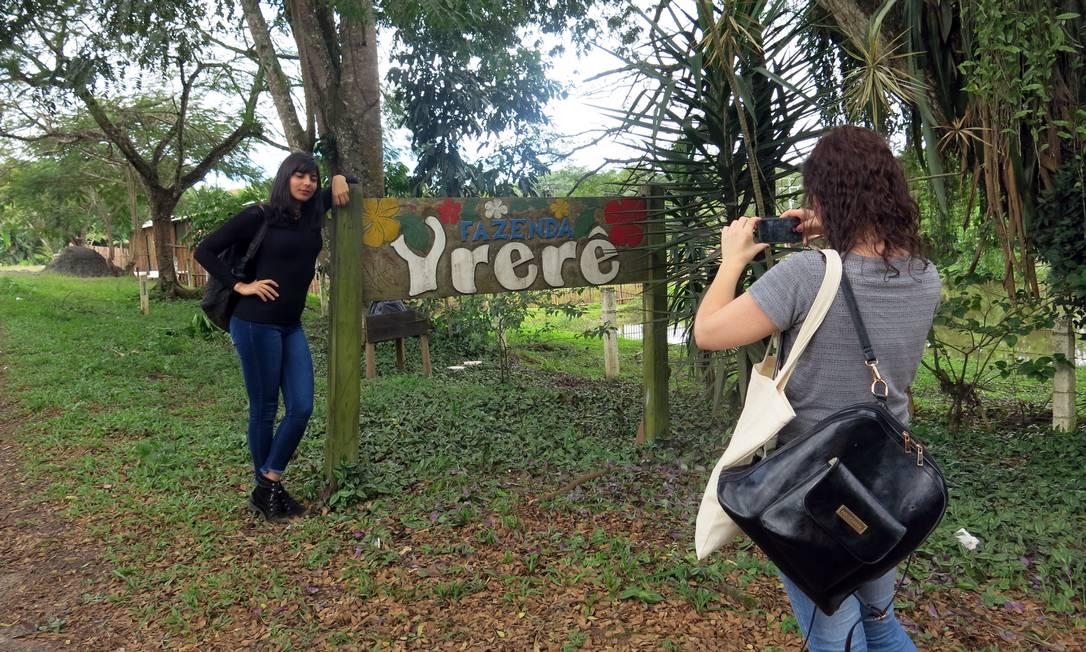 Fazenda Yrerê, que tem visita pela plantação de cacau, chocolate artesanal e almoço baiano Carolina Mazzi