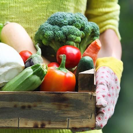 Mais de 15 produtores e expositores estarão presentes no evento oferecendo alimentos orgânicos Foto: Arquivo