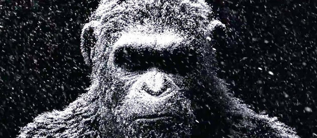 Cena do filme 'Planeta dos Macacos' Foto: Divulgação