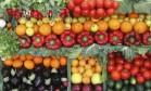 Frutas e verduras Foto: Reuters