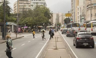 Sem verde. Canteiros na altura da Rua das Flores têm poucas mudas Foto: Analice Paron / Analice paron