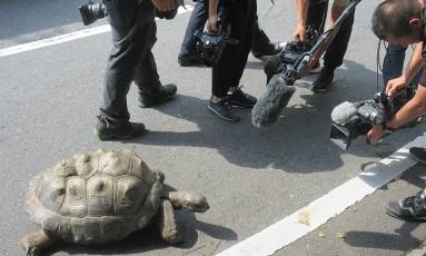 O desaparecimento de Abuh virou notícia nacional Foto: HANDOUT / AFP