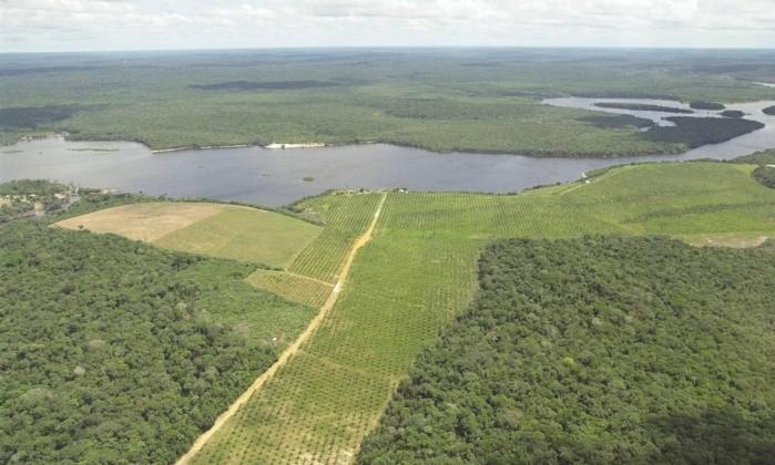 Tudo o que você precisa saber sobre a Renca — Mineração na Amazônia