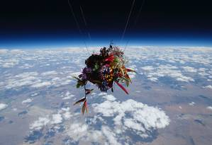 Arranjo de flores na estratosfera Foto: Divulgação/Makoto