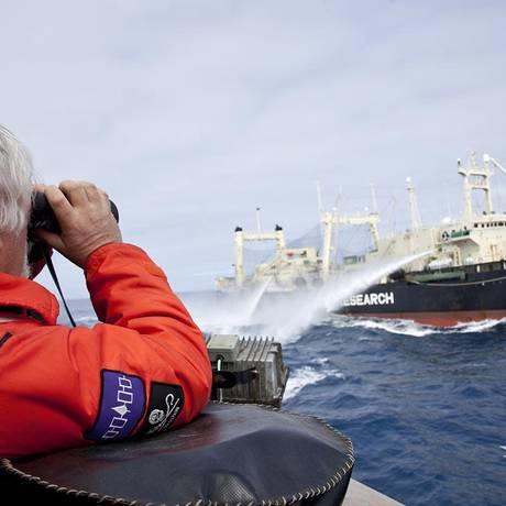 Sea Shepherd combatendo um navio baleeiro japonês Foto: Sea Shepherd