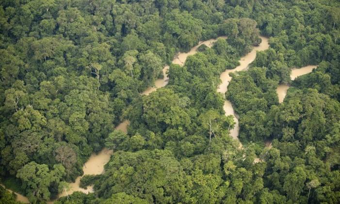 Rio Novo, na Floresta Nacional do Jamanxim, na Amazônia Foto: Antônio Scorza / AFP