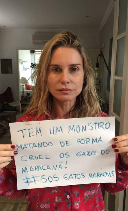 Paula Burlamaqui também entrou na campanha contra a matança de gatos no Complexo do Maracanã, na Zona Norte do Rio Foto: Divulgação
