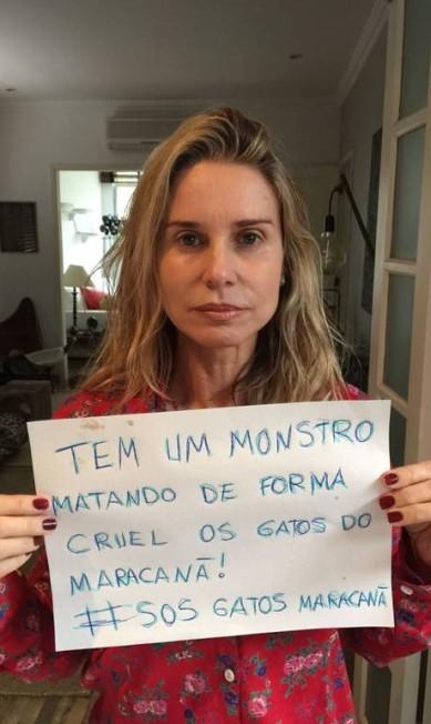 Paula Burlamaqui também entrou na campanha contra a matança de gatos no Complexo do Maracanã, na Zona Norte do Rio Divulgação