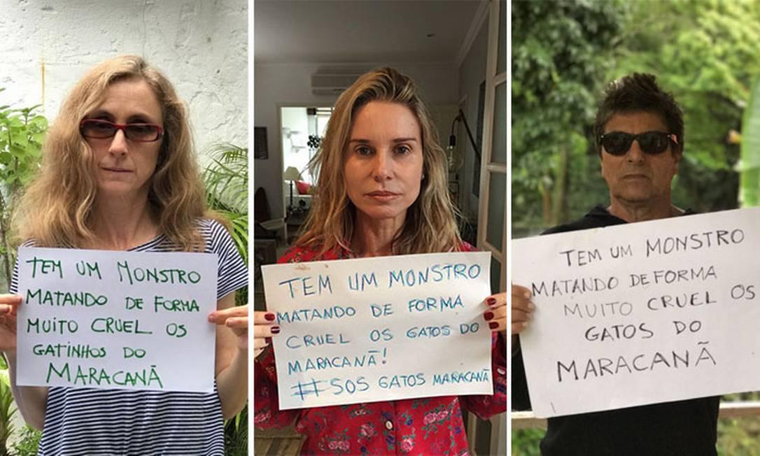Artistas fazem campanha contra a matança de gatos no Maracanã Foto: Divulgação