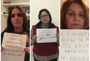 atrizes Malu Mader, Fabiana Karla e Patricya Travassos também aderiram à campanha contra mortes de gatos no Maracanã Foto: Divulgação