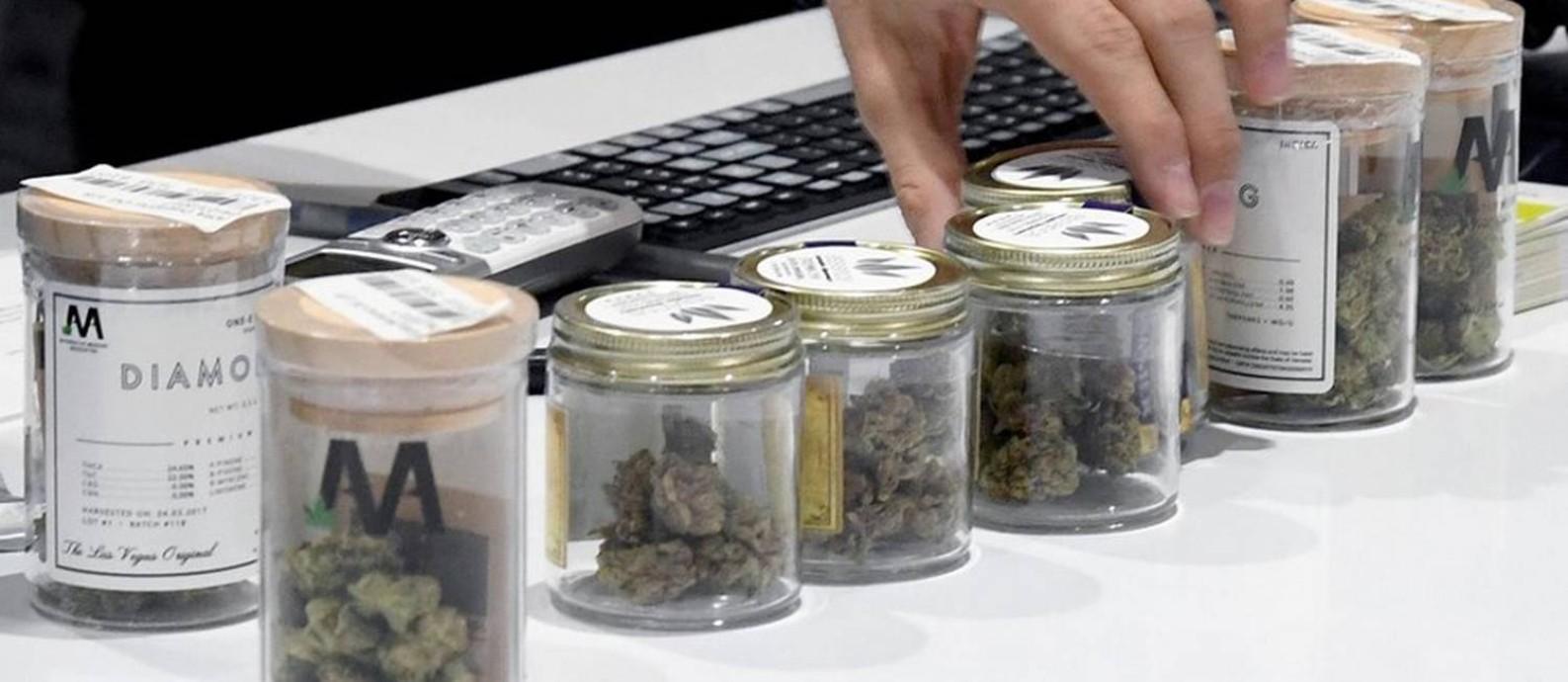 Cannabis exposta no dispensário Essence, em Las Vegas Foto: Ethan Miller/Getty Images/AFP