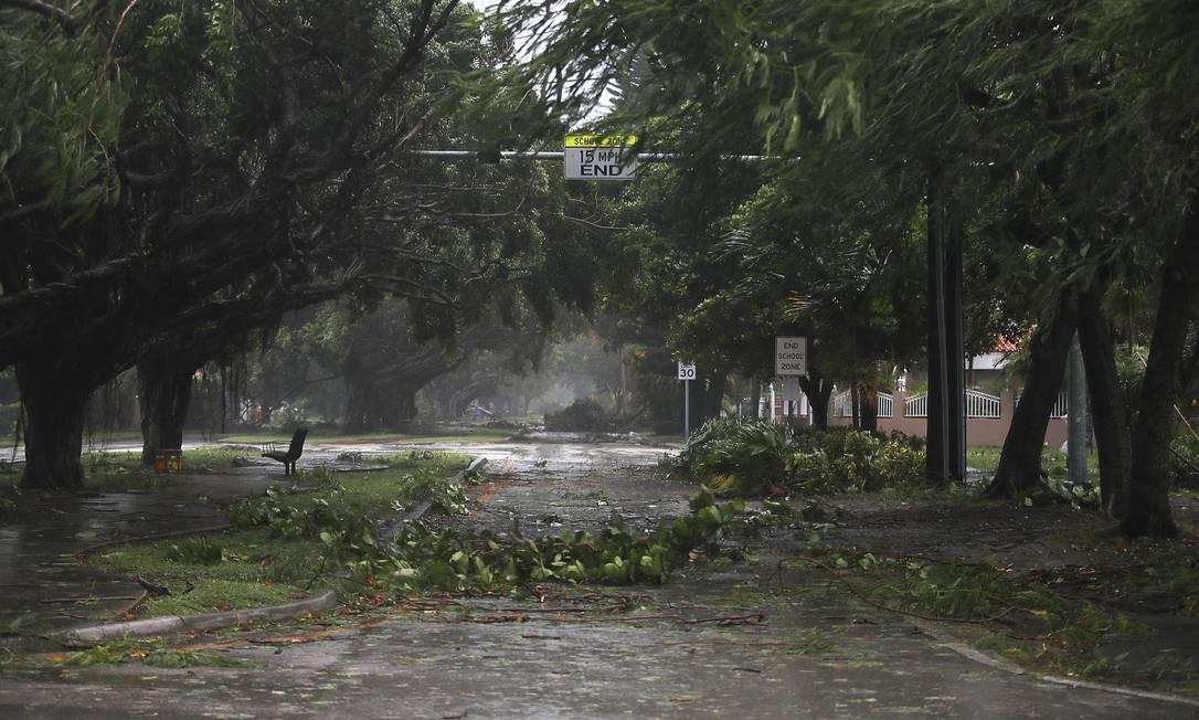Ruas de Miami já estão tomadas por galhos caídos das árvores Foto: JOE RAEDLE / AFP
