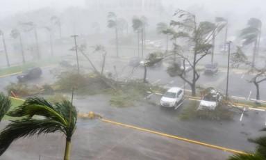 Árvores são derrubadas em um estacionamento em San Juan, Porto Rico, durante a passagem do furacão Maria. O fenômeno tocou terra no país nesta quarta-feira, afetando o território americano após matar ao menos duas pessoas no Caribe Foto: HECTOR RETAMAL / AFP
