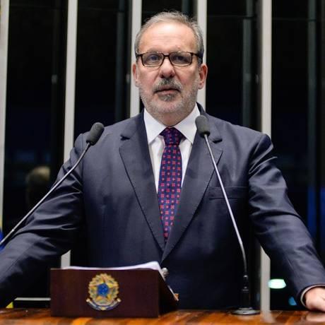 O relator da reforma política do Senado, Armando Monteiro (PTB-PE) Foto: Agência Senado