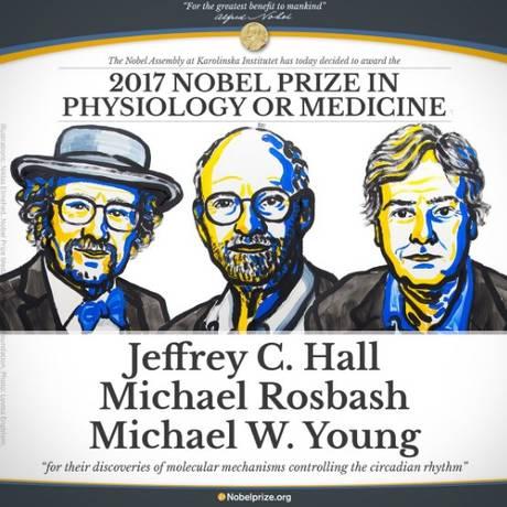 Trio vencedor do Nobel de Medicina 2017 Foto: Divulgação