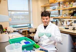 O imunologista Gabriel Victora estuda o processo de evolução dos anticorpos Foto: MacArthur Foundation / John D. e Catherine T.