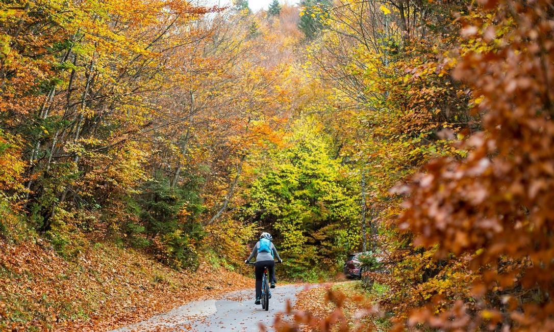 Apesar dos dias ainda curtos (se comparados com o verão), a estação é uma boa época para atividades ao ar livre, como essa inspiradora pedalada pelo bosque em Gnadenwald, na Áustria Foto: DOMINIC EBENBICHLER / REUTERS