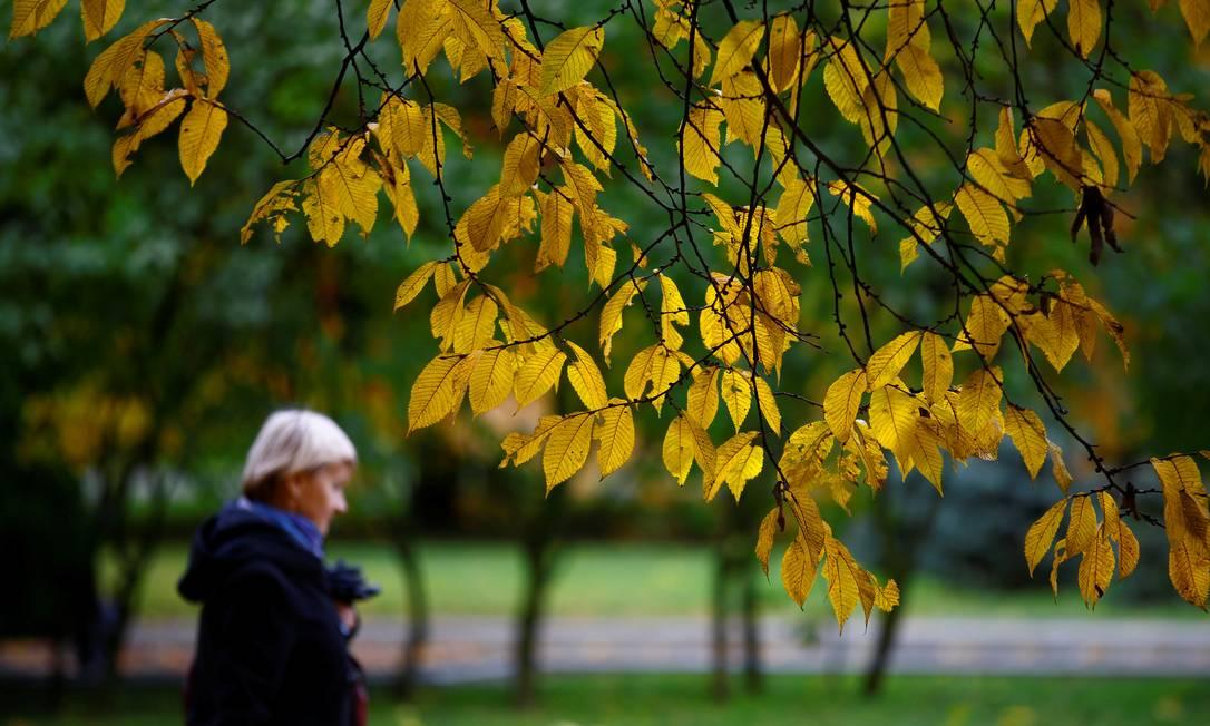 A beleza das folhas amareladas num parque da área central de Minsk, na Biolorrússia Vasily Fedosenko / REUTERS