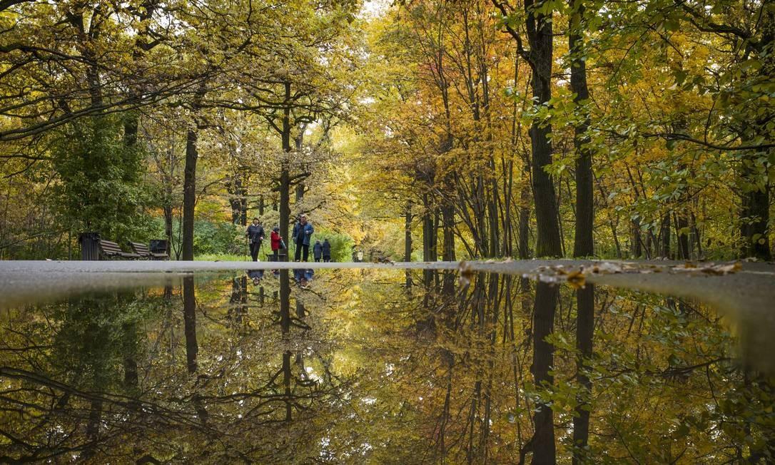 Até uma possa d'água vira uma obra de arte durante o outono, como essa num parque de Moscou Alexander Zemlianichenko / AP