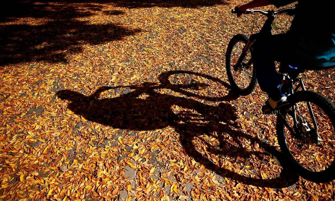 Durante o outono, as folhas formam um tapete natural por onde se passa. A pé ou de bicicleta, como neste caso em Zenica, na Bósnia e Herzegovina Foto: DADO RUVIC / REUTERS