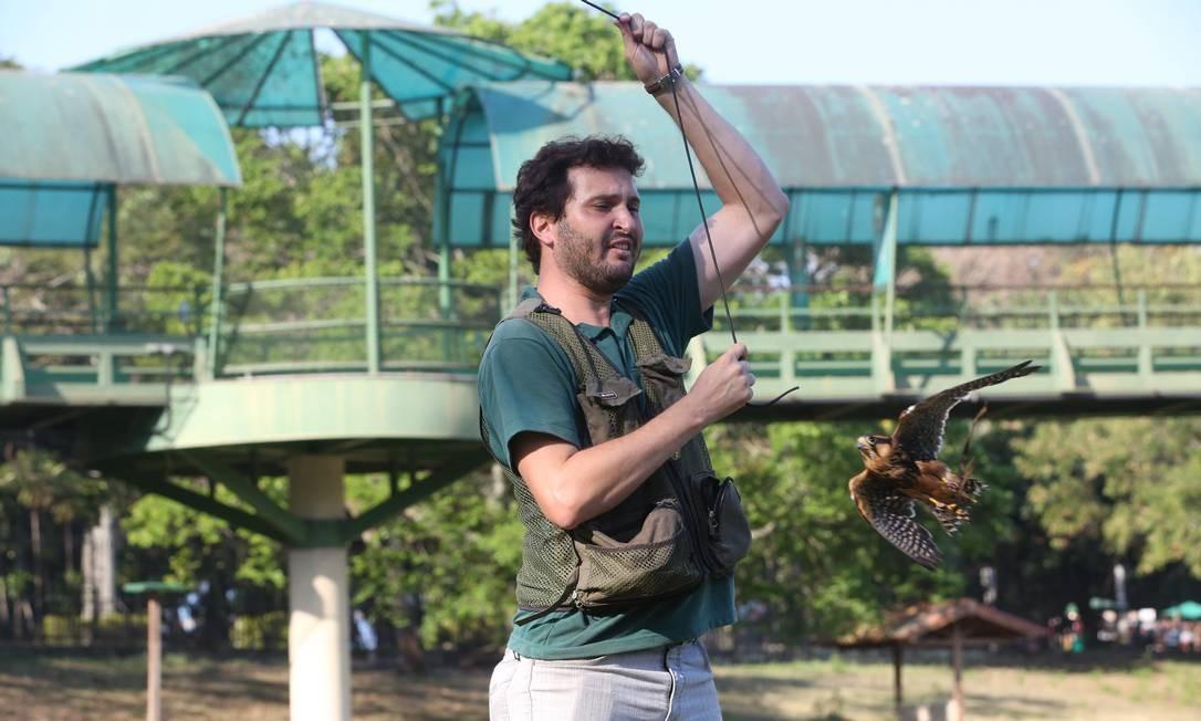 O falcoeiro Leandro Maltone adestra um pequeno gavião Foto: Custódio Coimbra / Agência O Globo