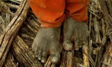 Governo atende à bancada ruralista e cria regras que dificultam fiscalização e punição de empregadores de trabalho escravo Foto: Marco Antônio Teixeira / Agência O Globo