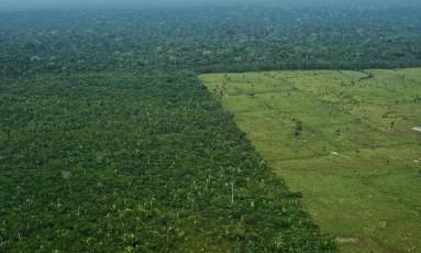 Vista aérea da Amazônia Foto: CARL DE SOUZA / CARL DE SOUZA/AFP/22-09-2017