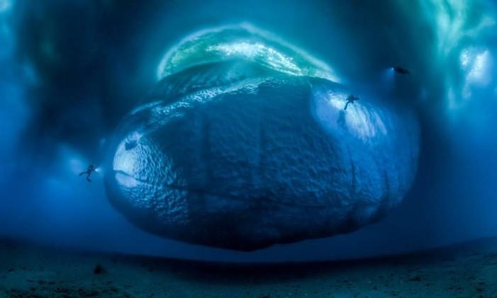 """""""The Ice Monster"""", por Laurent Ballesta, da França, venceu a categoria """"Meio ambiente"""". A fotografia mostra a parte submersa de um pequeno científico, durante uma expedição da equipe de Laurent fora da base científica Dumont d'Urville, na Antártica. Foto: Laurent Ballesta/NHM"""