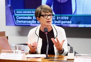 Procuradora federal dos Direitos do Cidadão, Deborah Duprat Foto: Divulgação