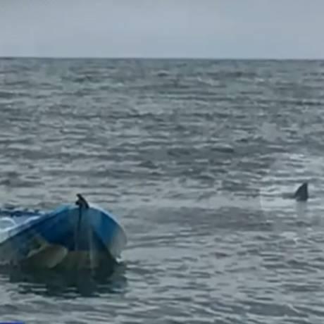 Tubarão atingiu caiaque e lançou adolescente para o ar Foto: Reprodução/9 News