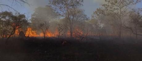Incêndio no Parque Nacional da Chapada dos Veadeiros, em Goiás Foto: Divulgação/ICMBio