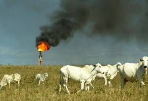 Agropecuária convive com chaminés da indústria do petróleo em Macaé (RJ): agronegócio responde por maior parte das emissões de gases de efeito estufa no Brasil Foto: Marco Antônio Barbosa/04-06-2003 / Agência O GLOBO