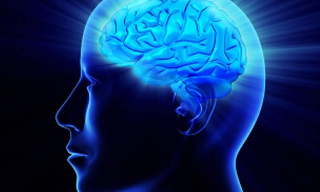 Ilustração de um cérebro humano: álcool afeta capacidade de neurogênese Foto: Reprodução