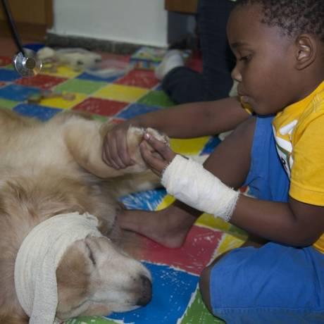 Pet Terapia. Juca, cão da raça golden retriever, e Arthur, que está em tratamento no Prontobaby Foto: Divulgação / divulgação/grupo prontobaby