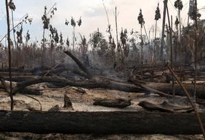 Floresta queimada na cidade de Apuí, no Amazonas Foto: Bruno Kelly/Reuters/31-07-2017