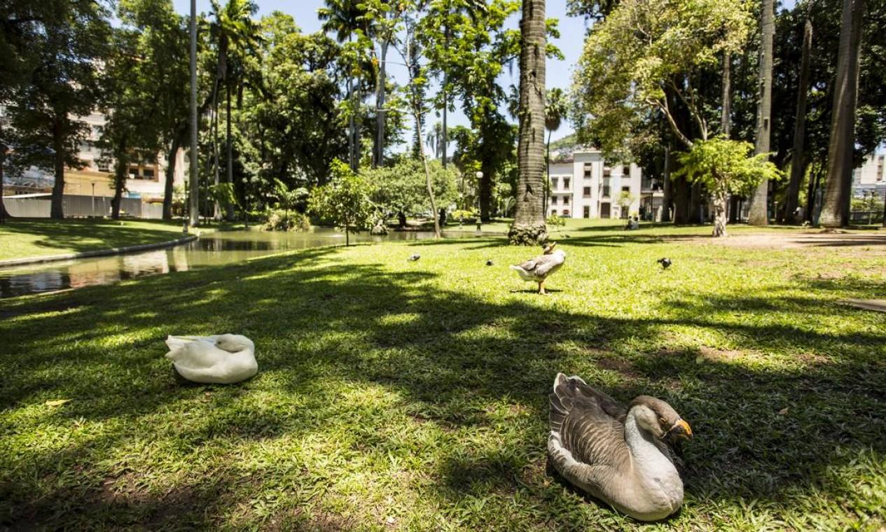 O Palácio ocupa 22.064,50 metros quadrados e tem, além de árvores e flores, patos e marrecos vivendo no lago Foto: Ana Branco / Agência O Globo