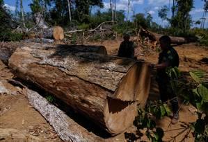 Agentes do Ibama participam de ação de combate ao desmatamento ilegal no sul do Amazonas, em agosto de 2017 Foto: Bruno Kelly / Reuters