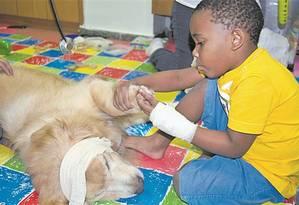 A interação entre crianças e animais tem resultados positivos na recuperação Foto: Grupo prontobaby / divulgação