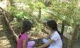 Variedade. Crianças têm contato com vegetais da horta comunitária da Praça Edmundo Rêgo: há cerca de 46 espécies, entre frutas, ervas, hortaliças, legumes e verduras